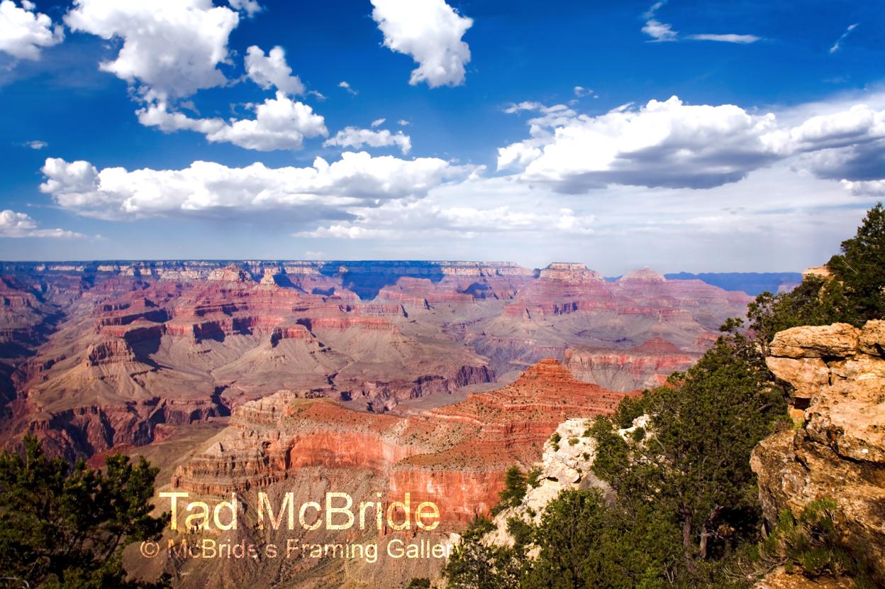 Tad McBride Southwest Images